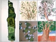 collage areboles 1